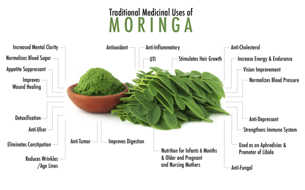 benefits moringa