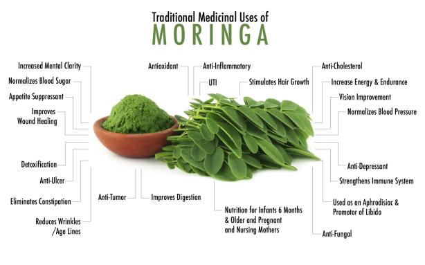 benefits moringa